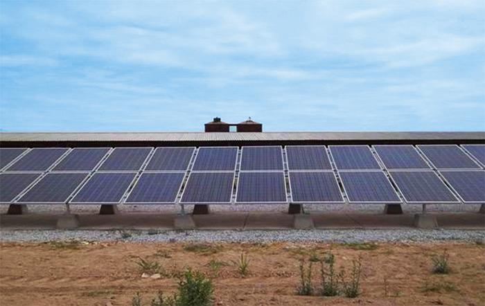 Agricultural Solar Energy